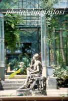 l'orto botanico PALERMO Luigi Nifosì
