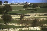 tipico paesaggio ibleo  - Iblei (4252 clic)