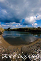 la foce del fiume irminio  - Irminio (3129 clic)