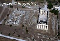 veduta aerea dei templi E ed F  - Selinunte (6102 clic)