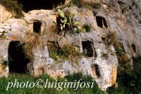 tombe della necropoli sud  - Pantalica (6283 clic)