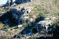 pantalica, necropoli nord  - Pantalica (5849 clic)