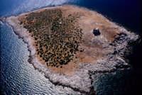 l'isola delle femmine - PA  - Isola delle femmine (5638 clic)