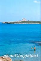 isola di capo Passero  - Portopalo di capo passero (3594 clic)