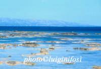 la scogliera a Nord di Marzamemi  - Portopalo di capo passero (2675 clic)