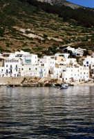 panorama del villaggio  - Levanzo (2072 clic)