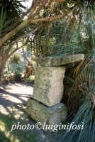 la villa Borghese al biviere di Lentini  - Lentini (2430 clic)