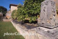 la villa Borghese al biviere di Lentini  - Lentini (2575 clic)