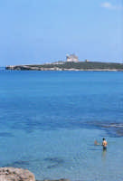 la spiaggia e l'isola di Capo Passero  - Portopalo di capo passero (4406 clic)