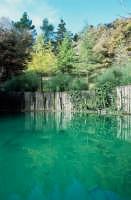 la riserva del sosio  - Lucca sicula (4257 clic)