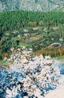 la riserva del sosio  - Lucca sicula (4109 clic)