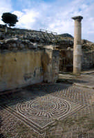 mosaico  - Solunto (8649 clic)