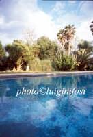 la villa del biviere di lentini  - Biviere (3986 clic)