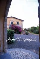 la villa del biviere di lentini  - Biviere (3874 clic)