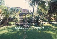 la villa del biviere di lentini  - Biviere (4120 clic)