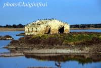 la riserva naturale  - Vendicari (7841 clic)