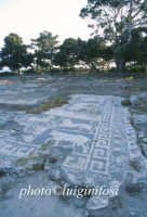 mosaici  - Mozia (4281 clic)