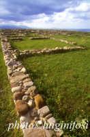 strutture murarie dell'abitato  - Hymera (4690 clic)