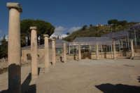 colonnato alla villa del casale  - Piazza armerina (4370 clic)