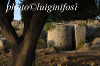 frammenti di colonna in sito presso le cave di cusa  - Cave di cusa (3682 clic)