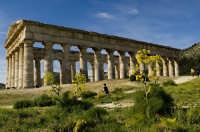 il tempio di segesta  - Segesta (1992 clic)