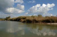 la foce del fiume irminio  - Scicli (1512 clic)