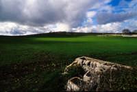 paesaggio ibleo  - Frigintini (4270 clic)