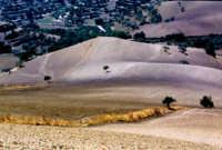 paesaggio ibleo  - San giacomo (3670 clic)