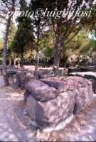sepolture nel giardino del castello  - Lipari (2150 clic)