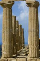 le colonne del tempio di giunone  - Agrigento (2125 clic)