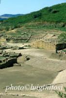 l'area dell'agorà e il teatro  - Morgantina (5189 clic)