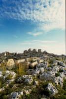 castello eurialo  - Siracusa (2112 clic)