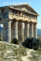 il tempio  - Segesta (1988 clic)
