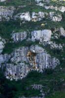la necropoli nord  - Pantalica (5388 clic)