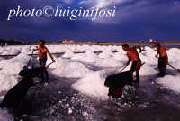 raccolta del sale alle saline ettore e infersa  - Marsala (4274 clic)