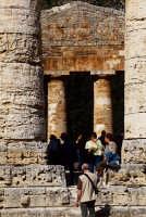 il tempio  - Segesta (1850 clic)