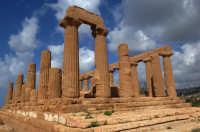 il tempio di giunone   - Agrigento (2247 clic)