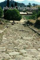 antica strada di accesso al nucleo urbano   - Morgantina (4926 clic)