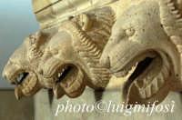 museo salinas - teste leonine da imera  - Palermo (6467 clic)