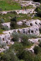 le tombe della necropoli sud  - Pantalica (7734 clic)