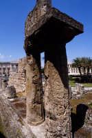 il tempio di apollo a ortigia  - Siracusa (1419 clic)