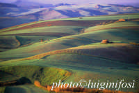 paesaggio rurale a valguarnera  - Valguarnera caropepe (16750 clic)