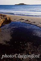 la spiaggia e l'isola  - Isola delle correnti (4419 clic)