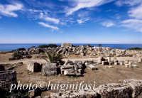 l'acropoli  - Selinunte (2712 clic)