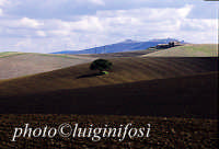 paesaggio   - Valguarnera caropepe (3931 clic)