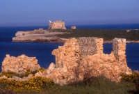 isola di capo passero vista da Porto Palo  - Portopalo di capo passero (9831 clic)