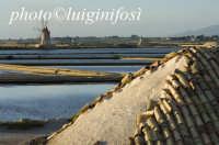le saline dello stagnone  - Marsala (1165 clic)