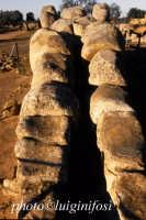 valle dei templi, il telamone del tempio di zeus  - Agrigento (2382 clic)