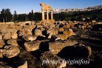 valle dei templi, resti del tempio dei dioscuri  - Agrigento (2142 clic)