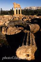 valle dei templi, resti del tempio dei dioscuri  - Agrigento (2204 clic)